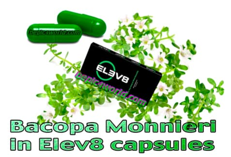 Bacopa monnieri is an ingredient of Elev8