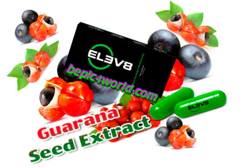 Guarana Extract in Elev8