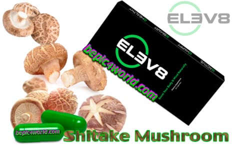 Shiitake Mushroom in the capsules of Elev8 B-Epic