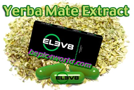 Yerba Mate is an ingredient of Elev8