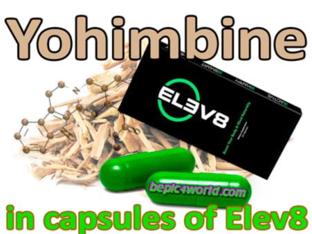 Yohimbine ingredient of capsules of Elev8