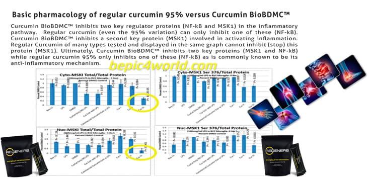 B-Epic Regener8 tea patented BioBDMC™ technology