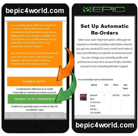 Instruction (scheme) 7 of placing order and buying BEpic supplements